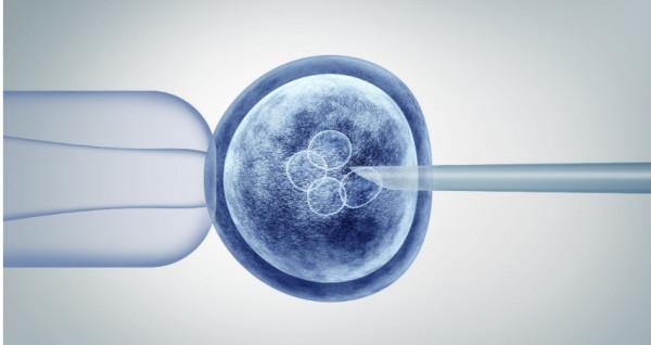 Передімплантаційна генетична діагностика #1